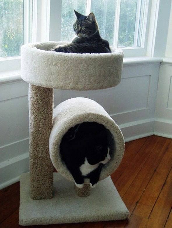 Дом для кошек своими руками в домашних условиях